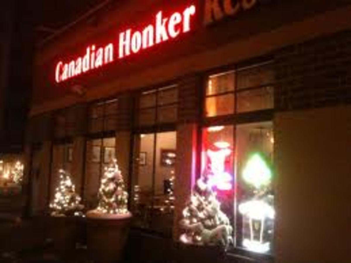 Canadian Honker in Rochester, MN