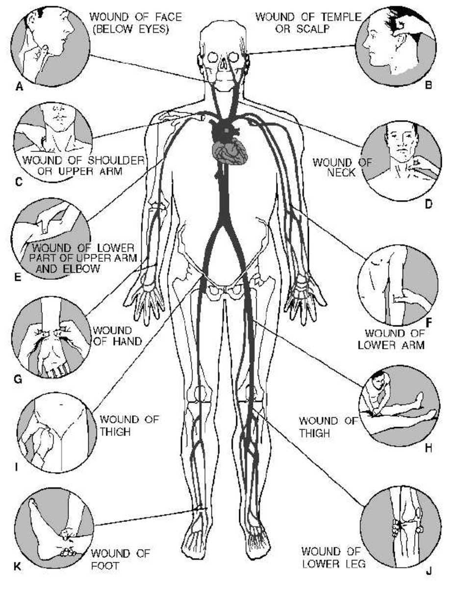 first-aid-basics-bleeding