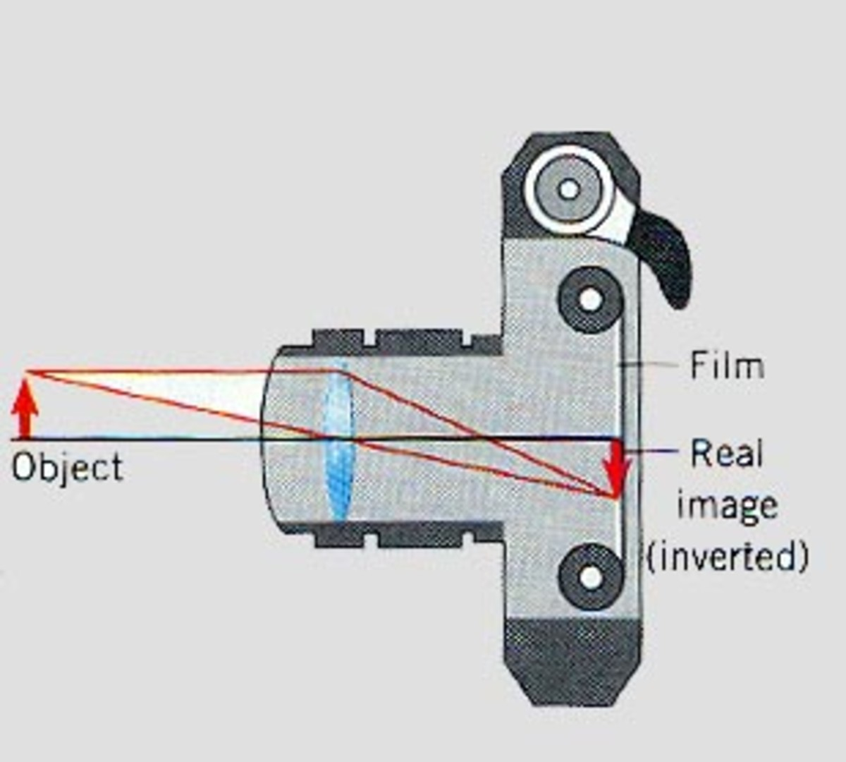 Diagram of how still film photography works