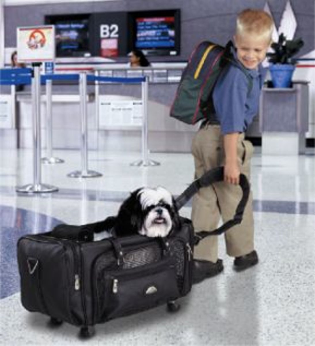 samsonite-pet-carriers