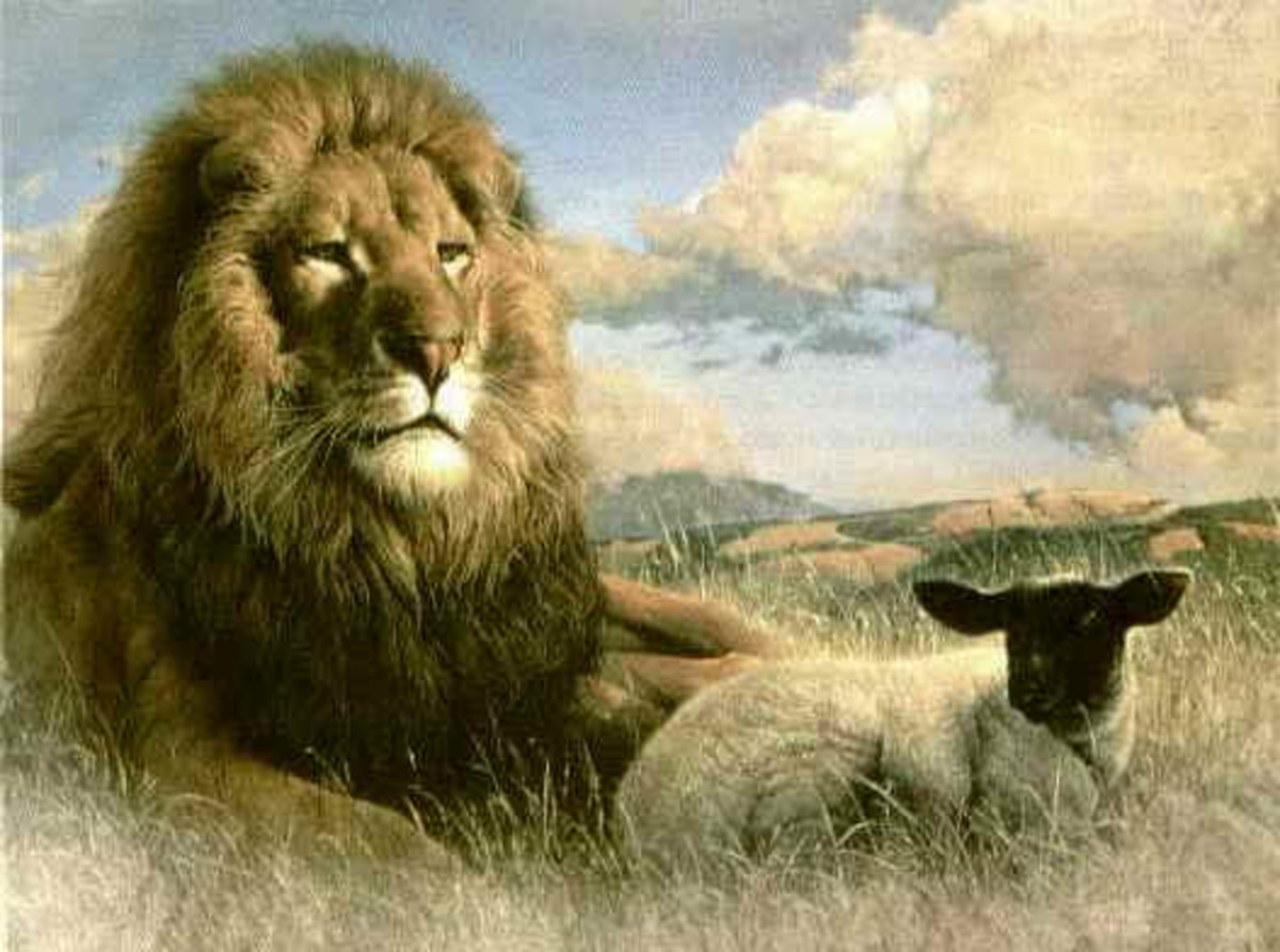 The Lamb shall lie down with the Lion.