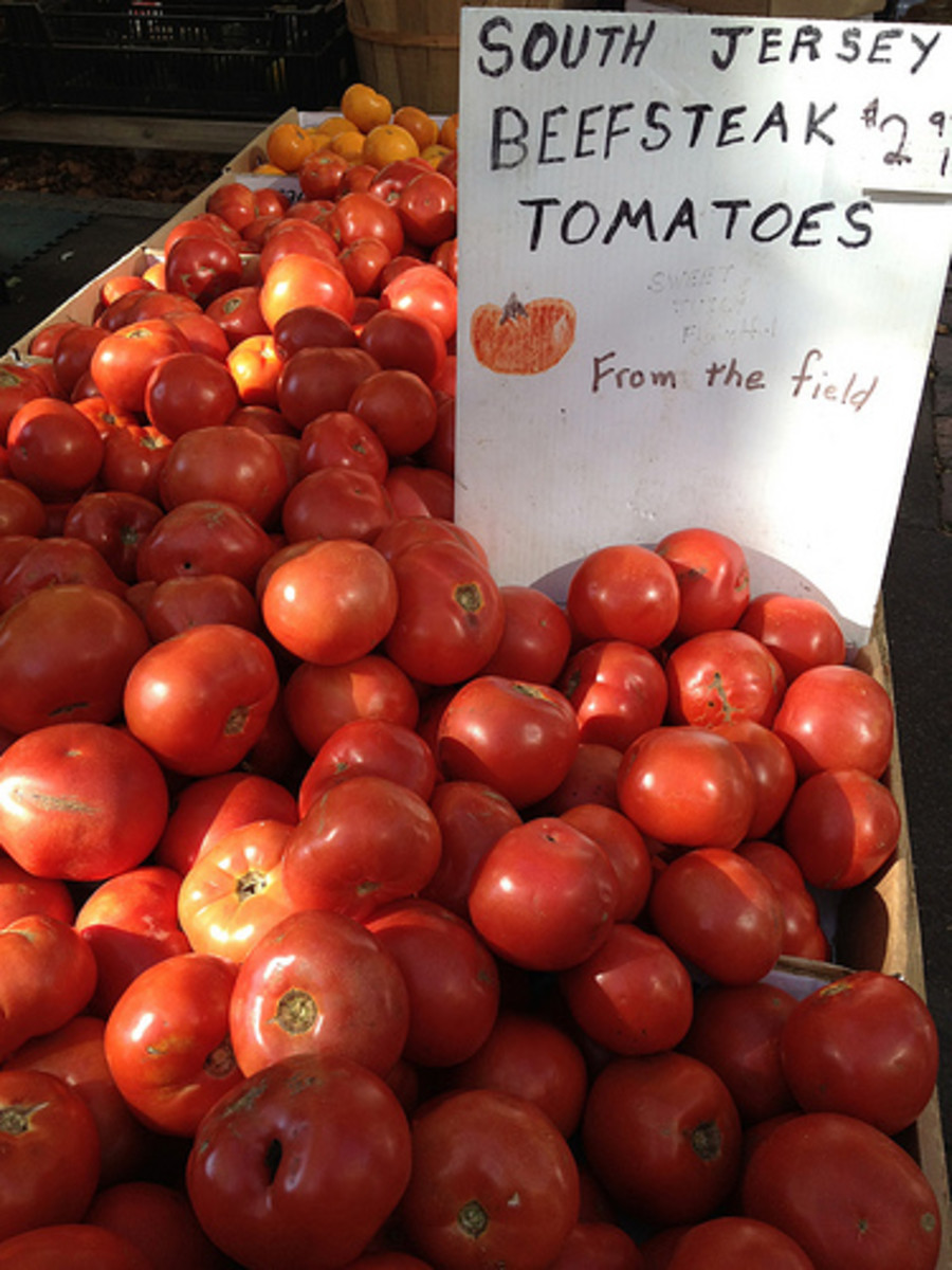 history-and-lore-of-the-jersey-tomato-recipes-tips