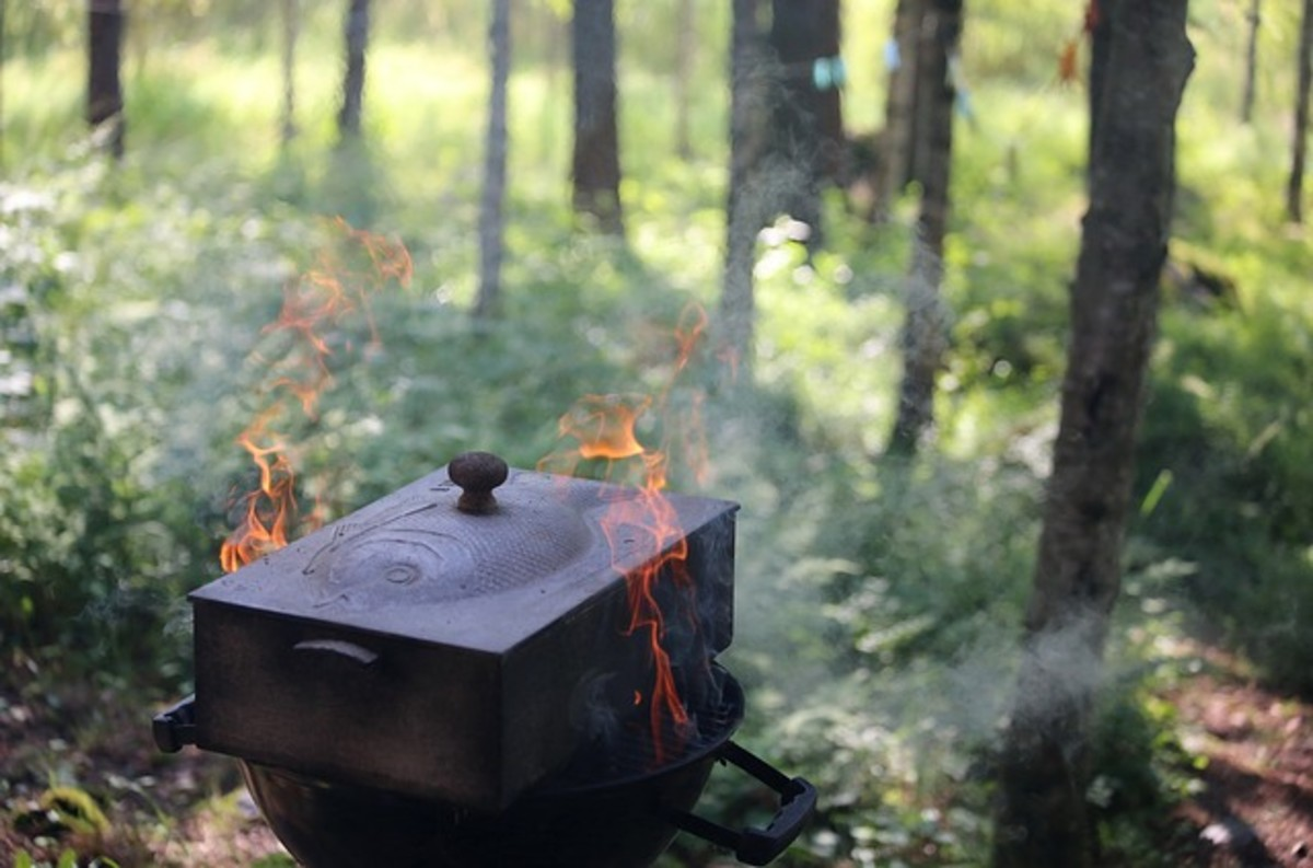 Smoker Grill/BBQ