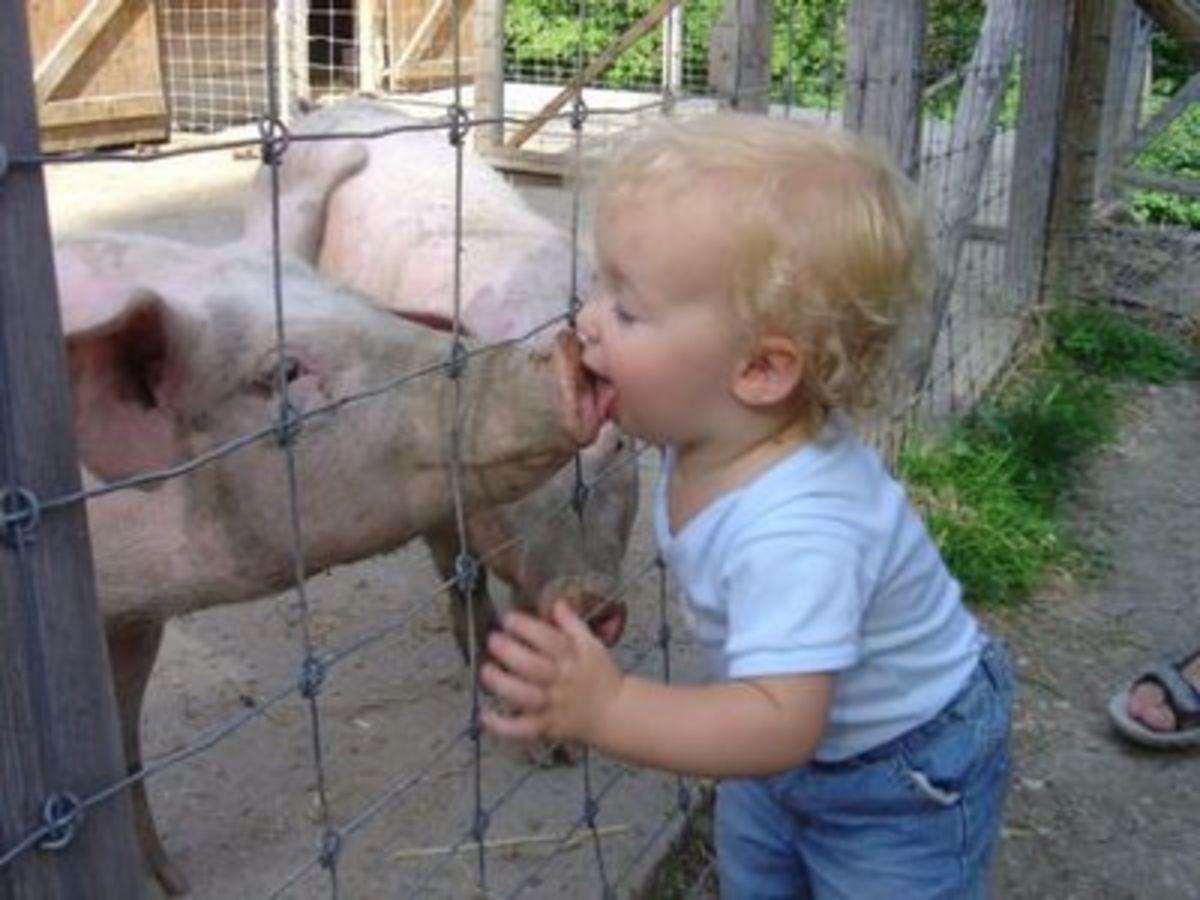 "or, ""Hey!  You taste like bacon!"""