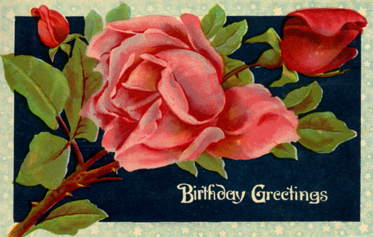 "vintage birthday card: red and pink roses on a black background ""Birthday Greetings"""