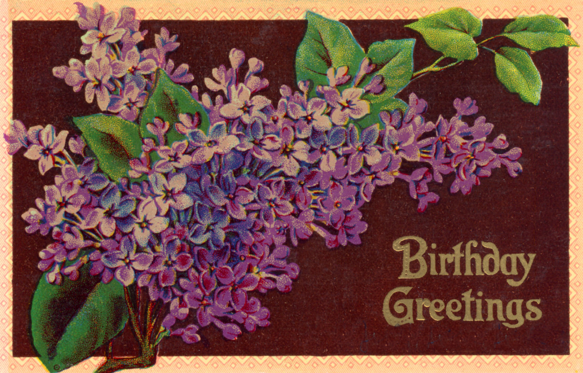 "vintage birthday card: lilacs ""Birthday Greetings"""