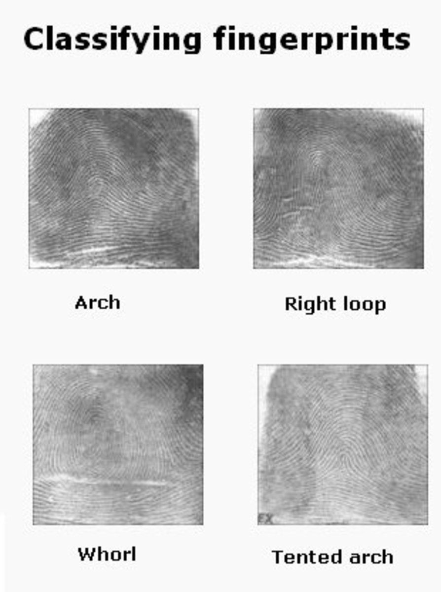 Fingerprint Classification Project