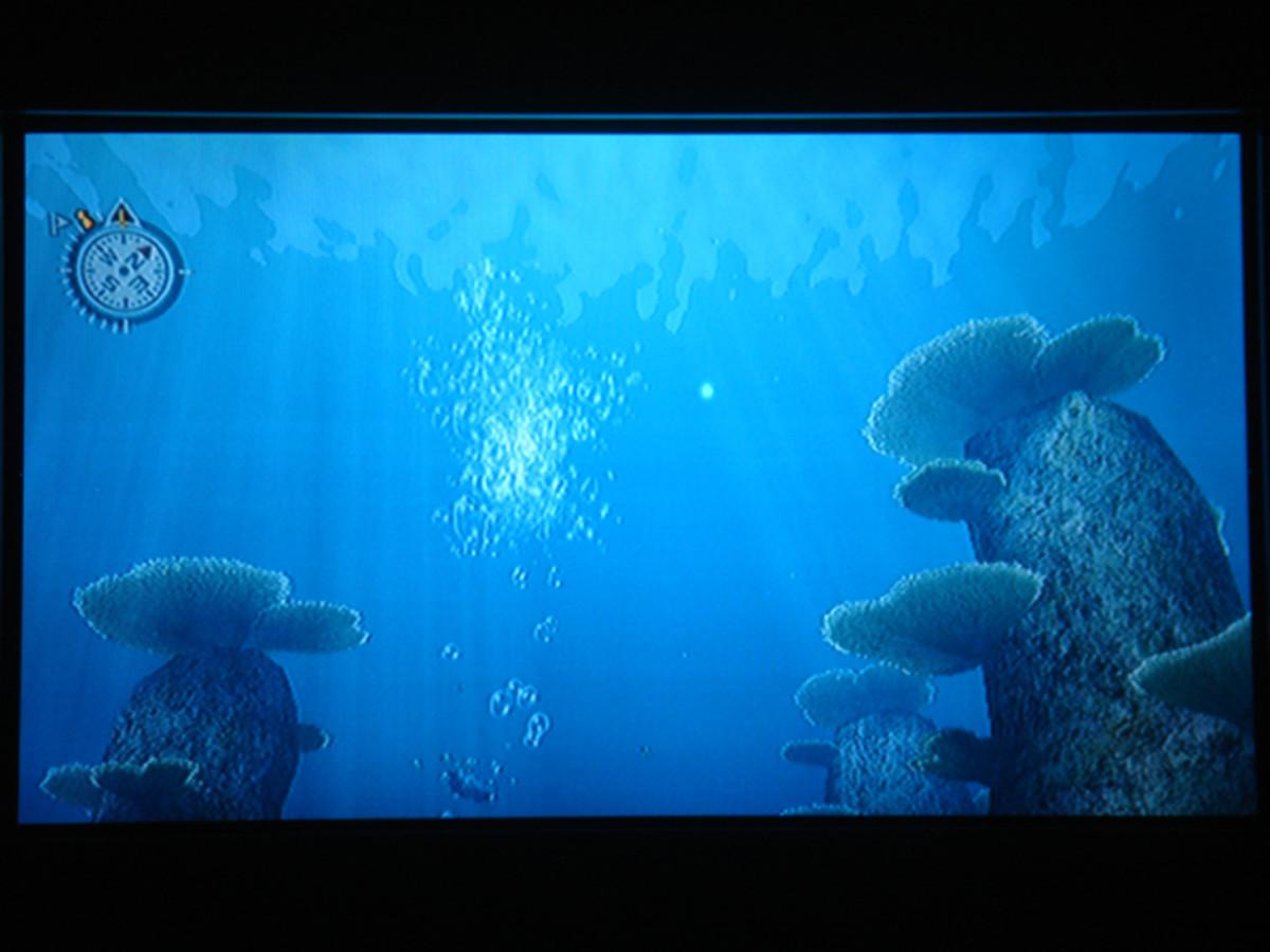 endless-ocean-wii---walkthrough-and-cheats