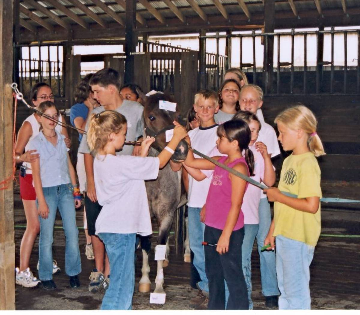 Games in the Horseback Riding Lesson Plan