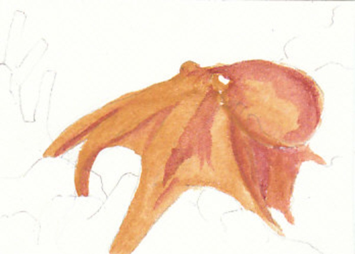 You can begin with any area that will be the same color. I started with the octopus.