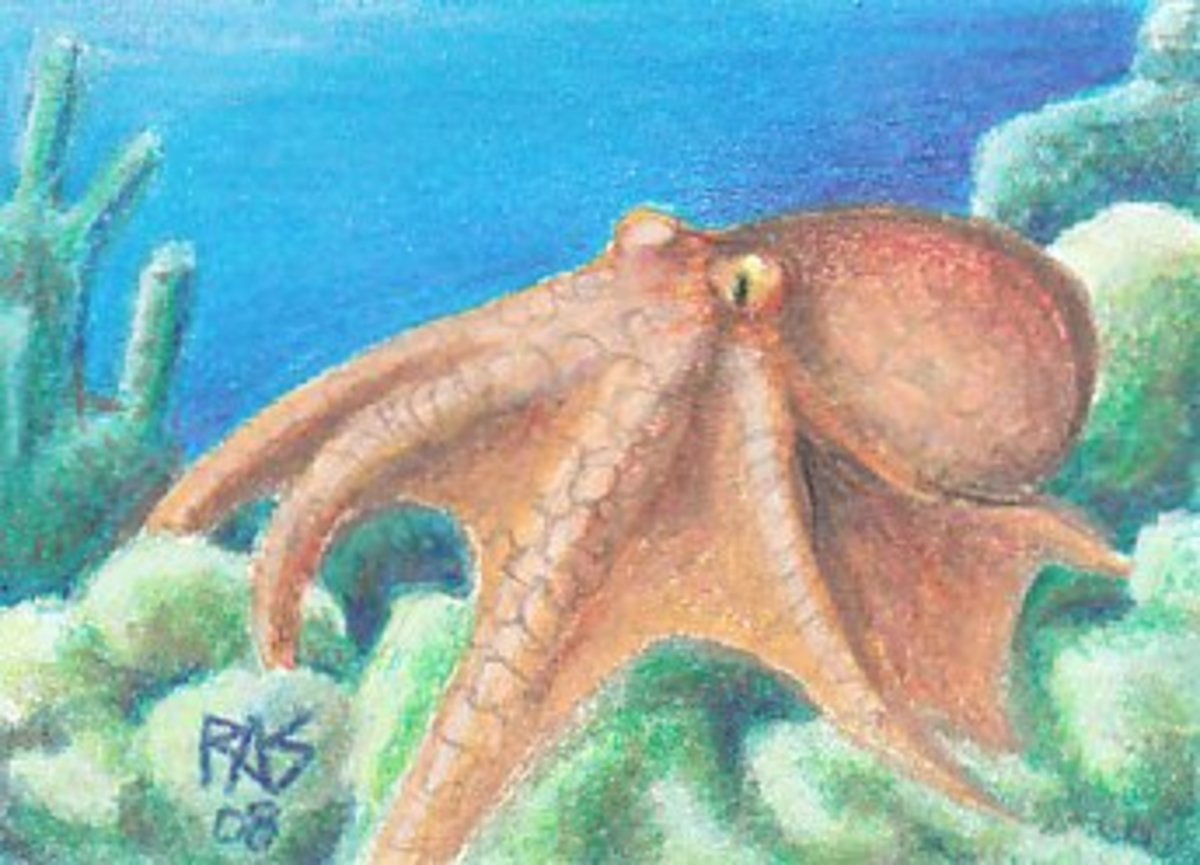 The Octopus, by Robert A. Sloan