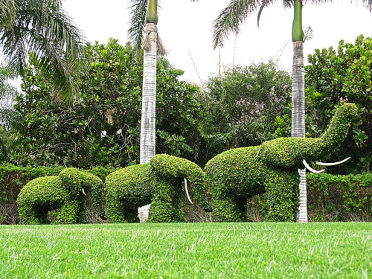 Green Elephants Garden Sculptures (Photo courtesy by epSos.de from Flickr.com)