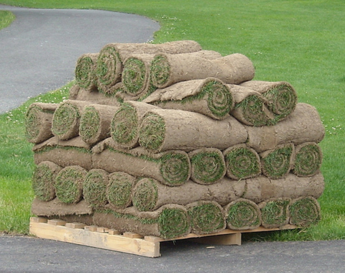 Rolled Grass (Photo courtesy by chrstphre from Flickr.com)