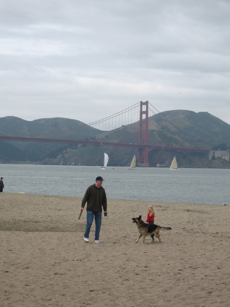 My husband, daughter, and dog at Crissy Field