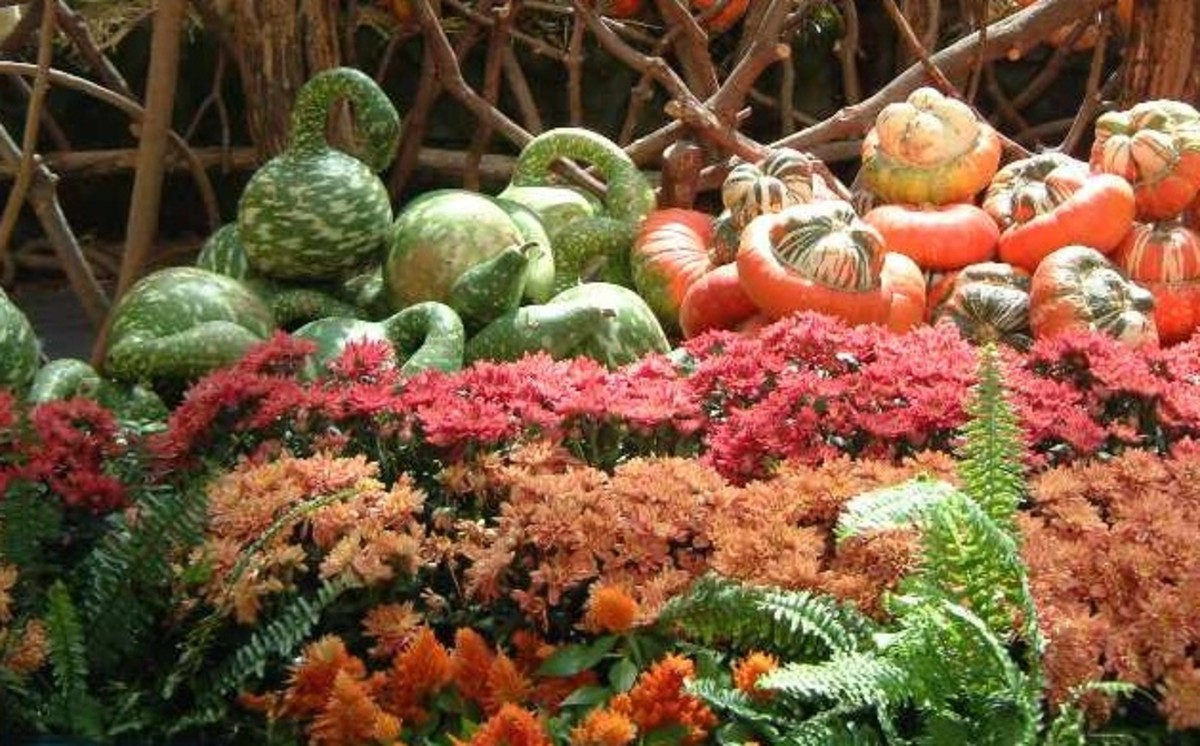 Harvest vegetables like gourds and squash and autumn flowers are suitable for table centerpieces and altar or hearth displays.
