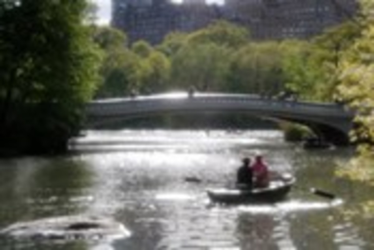 Rent a rowboat on the Central Park Lake