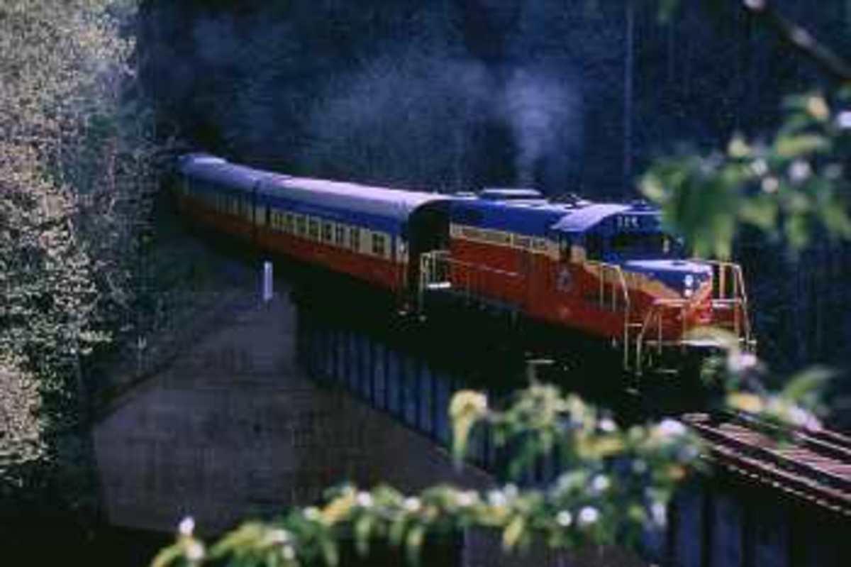 great_smoky_mountains_railroad