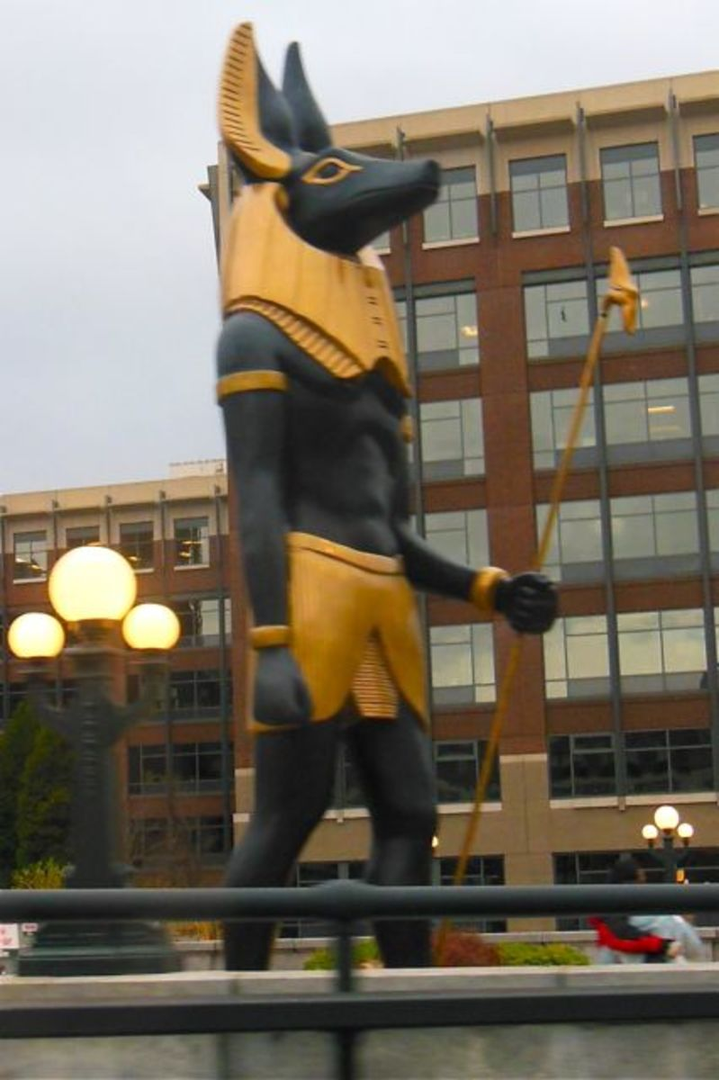 Anubis in Seattle (for the Tut exhibit)