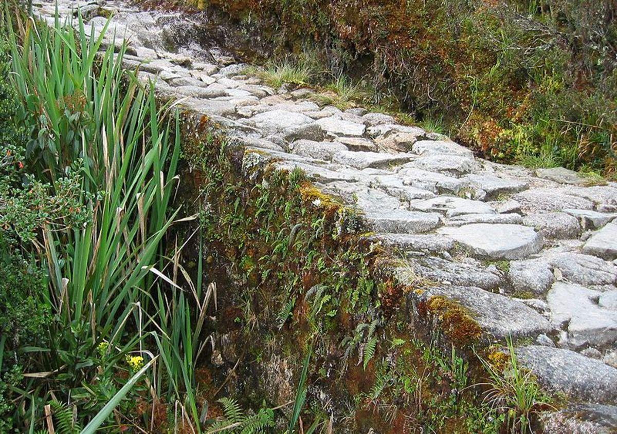 Inca Trail includes Machu Picchu. Built in 1450, Rediscovered in 1911.
