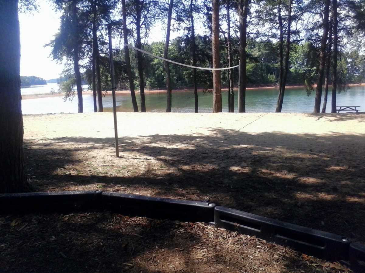 Volleyball in day use area
