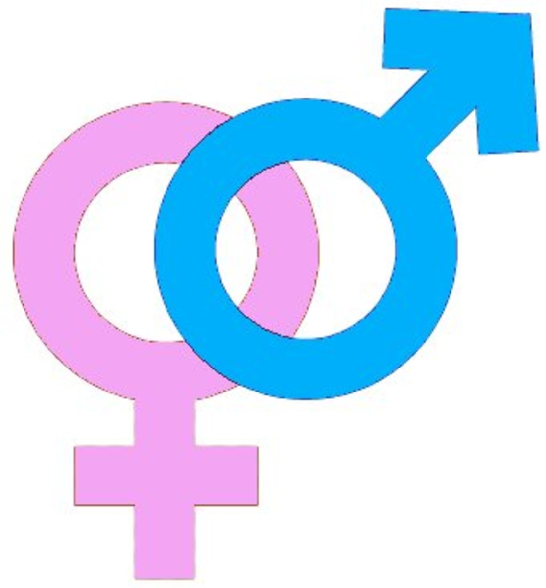 Gender - male and female