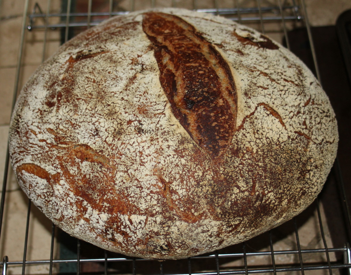 Caramelized Onion Sourdough