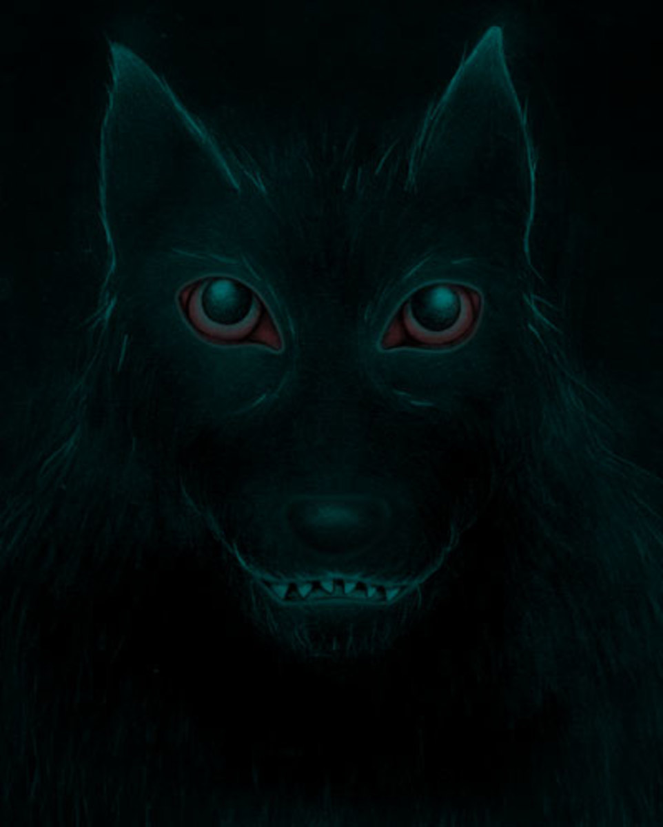 "Source: ""Blackdog"" by Liza Phoenix - Own work. Licensed under CC BY 3.0 via Commons - https://commons.wikimedia.org/wiki/File:Blackdog.jpg#/media/File:Blackdog.jpg"
