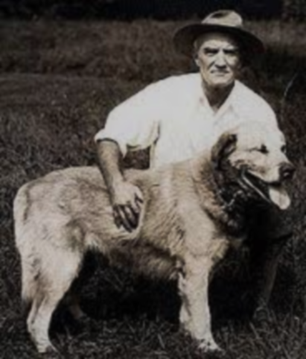 Arthur Treadwell Walden, who created Chinook Dog breed