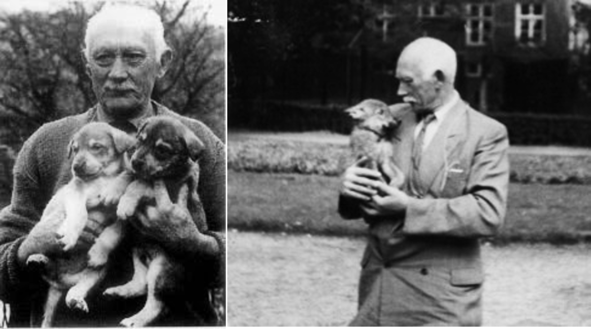 Leendert Saarloos (1884–1969), Creator of Saarloose Wolfdog