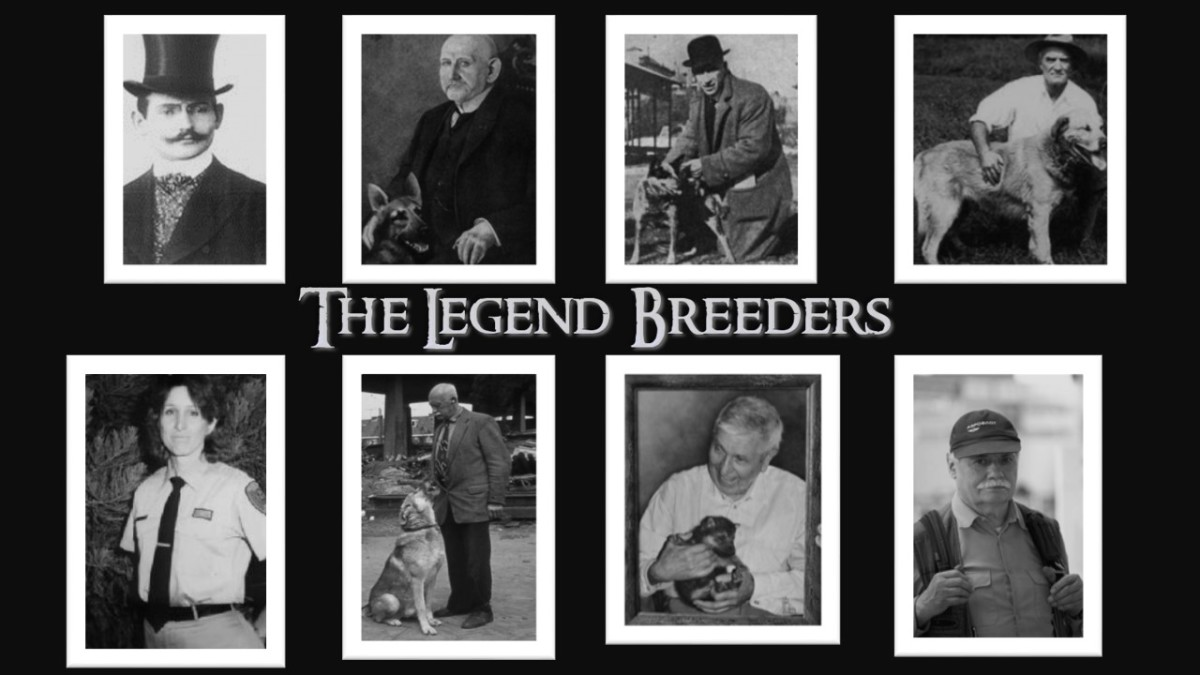 The 10 Most Respected Breeders Who Founded New Dog Breeds