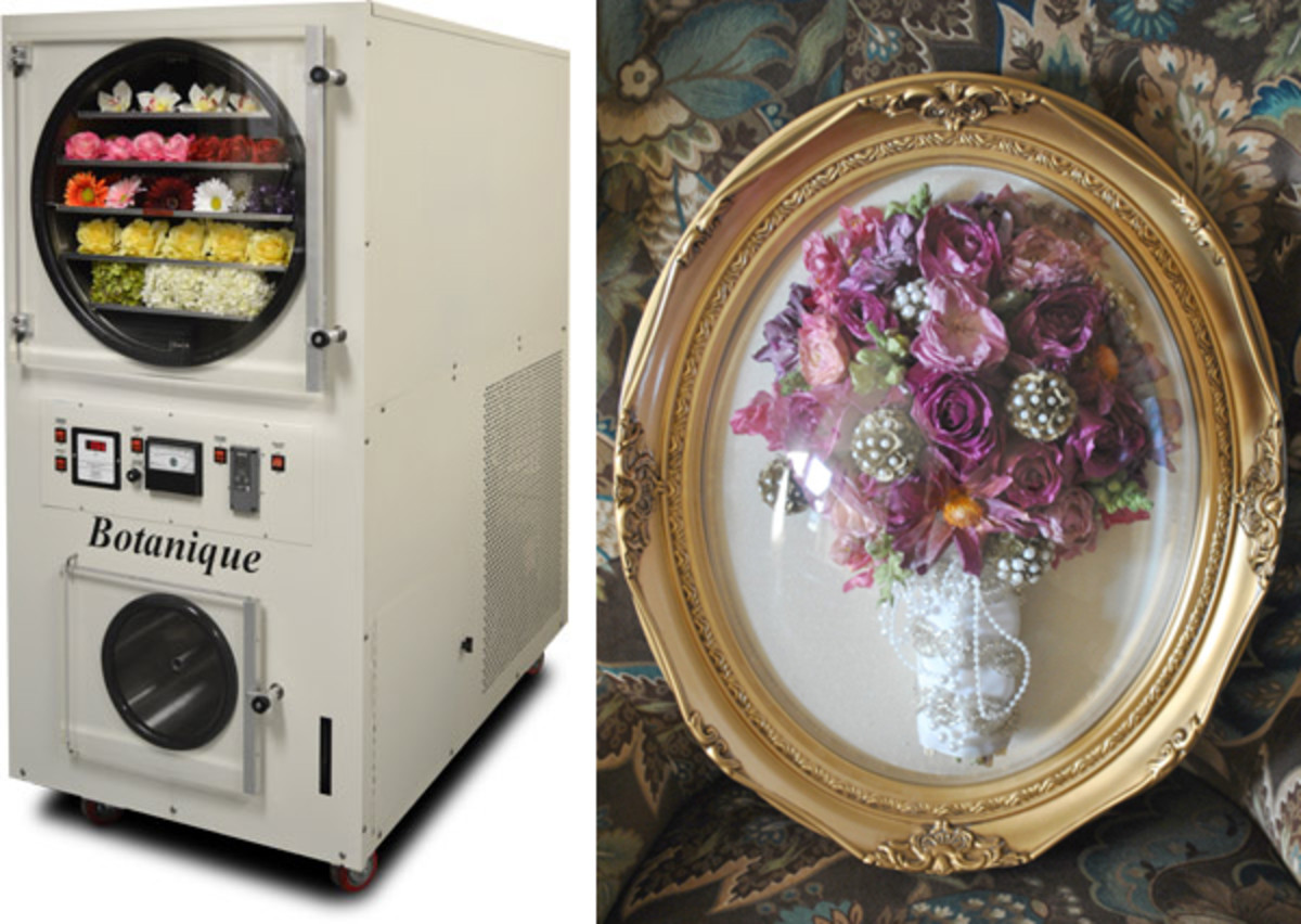 floral-freeze-drying-preserving-bouquets-and-flowers
