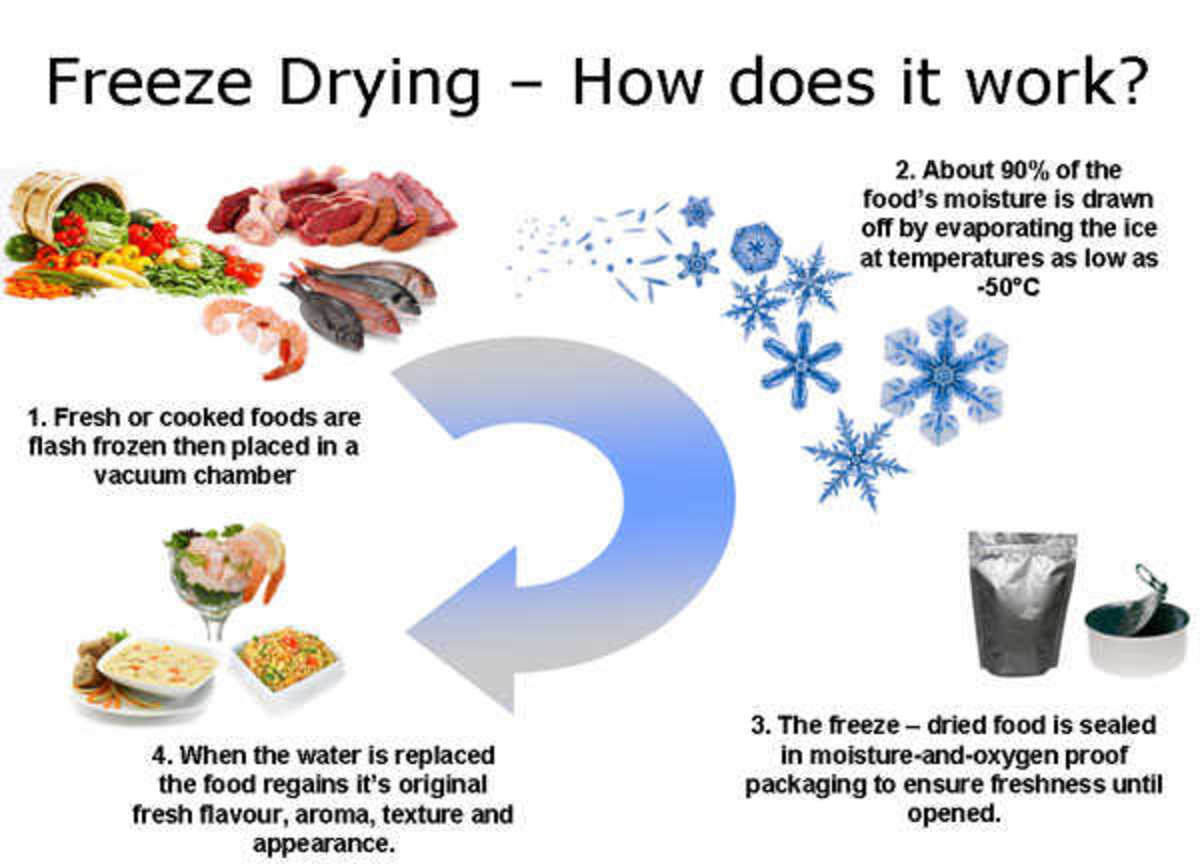 Floral Freeze Drying Preserving Bouquets And Flowers