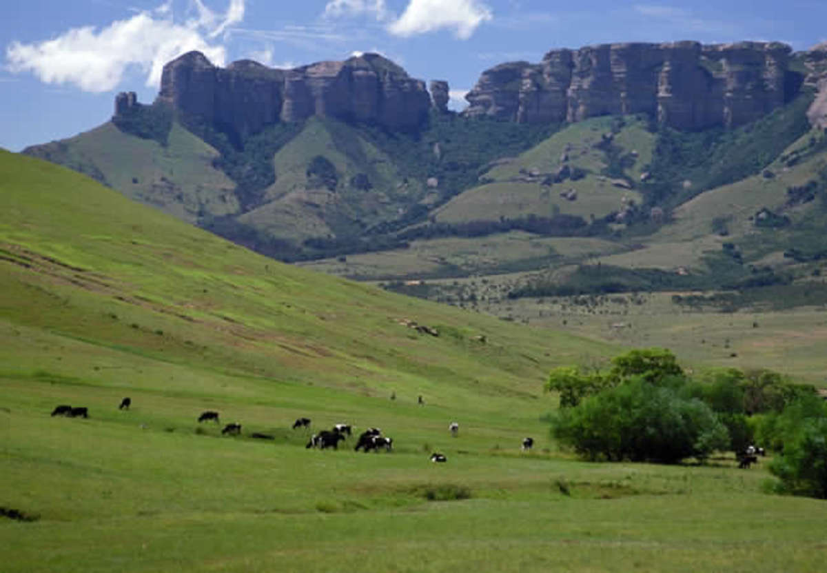 At the foot of the Rooiberg Mountain, Bethlehem, Free State, South Africa