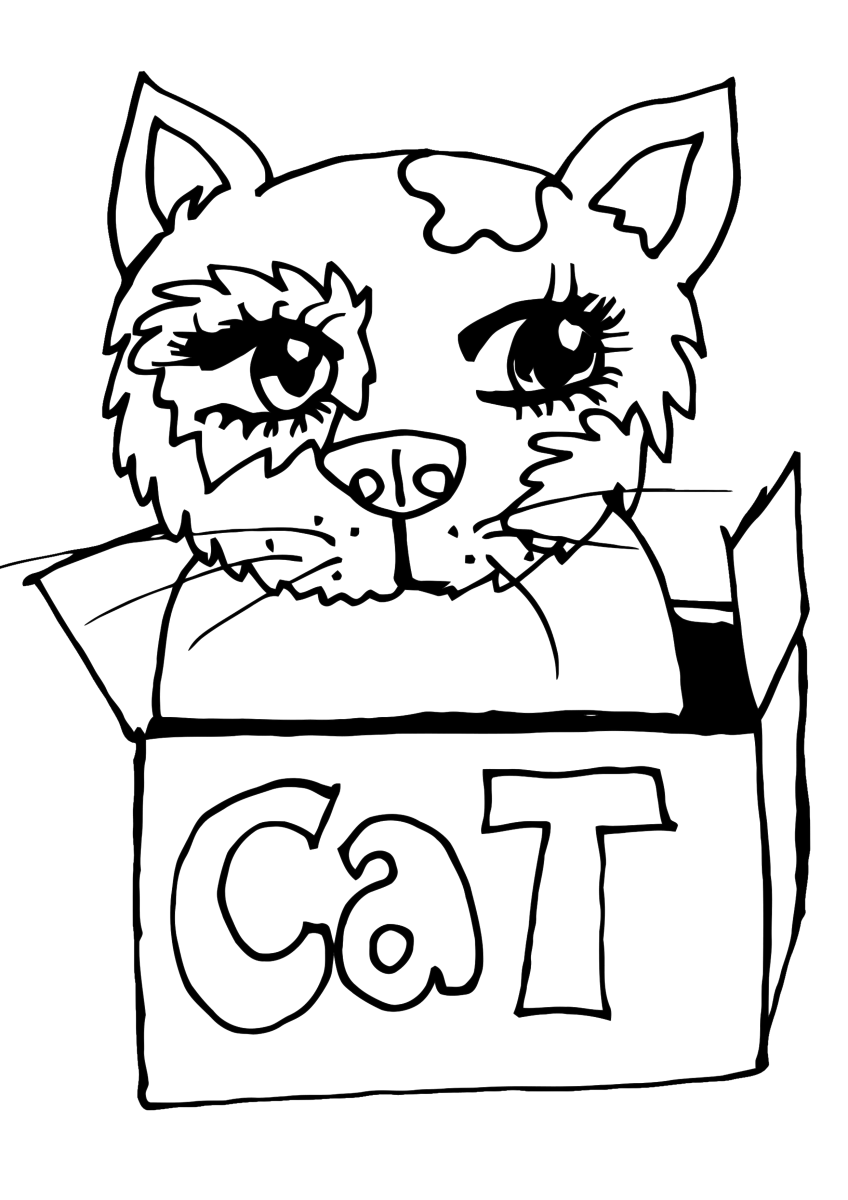 "Simple kitty cat coloring page featuring a kitten in a box labeled ""cat."""