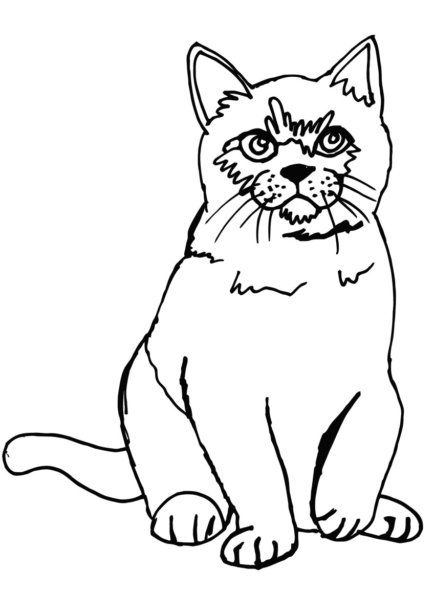 Cat sitting coloring page with blank background