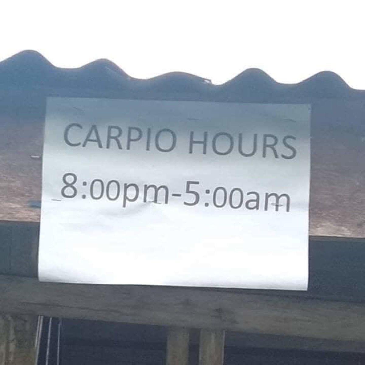Note to self: Use curfew hours to brush up on spelling.