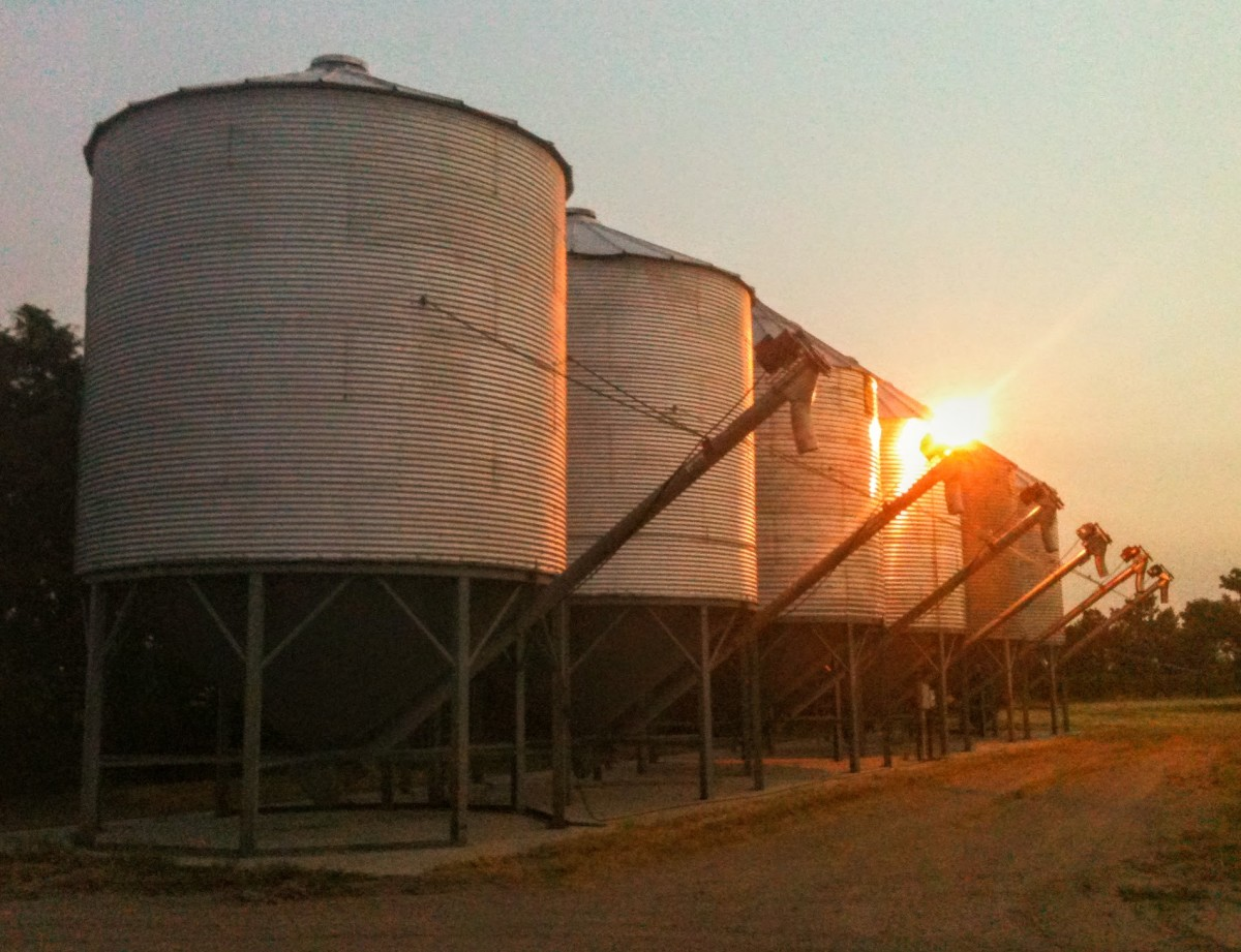 These grain bins are all 18-foot diameter bins set onto hoppers. They have a capacity of well over 4,000 bushels.
