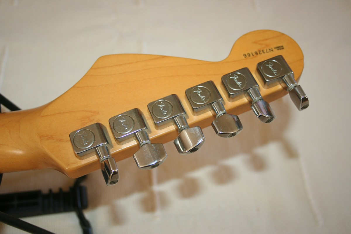 back view of tuning pegs or machine heads