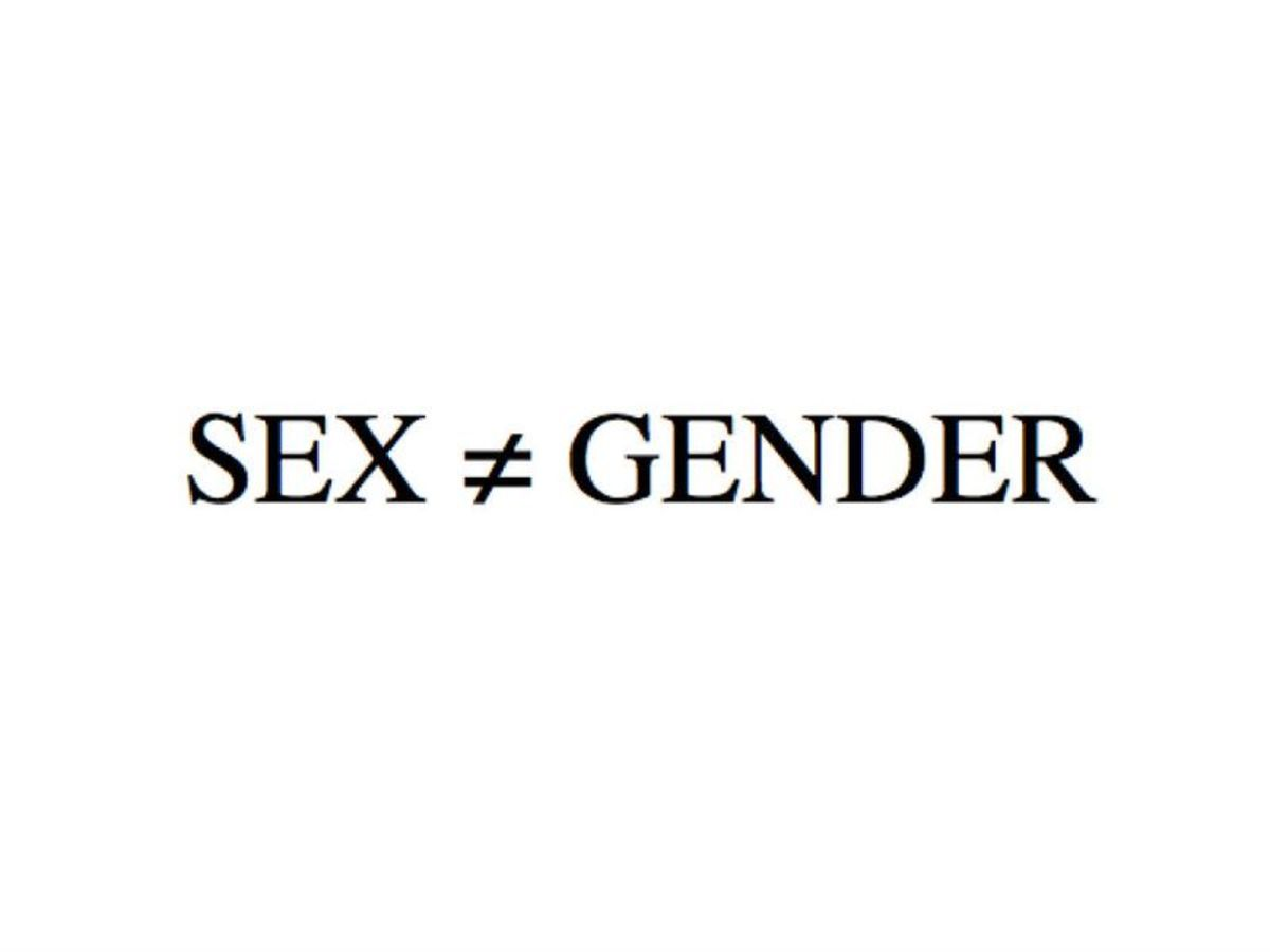 sexual-orientations-as-in-figuring-out-your-own
