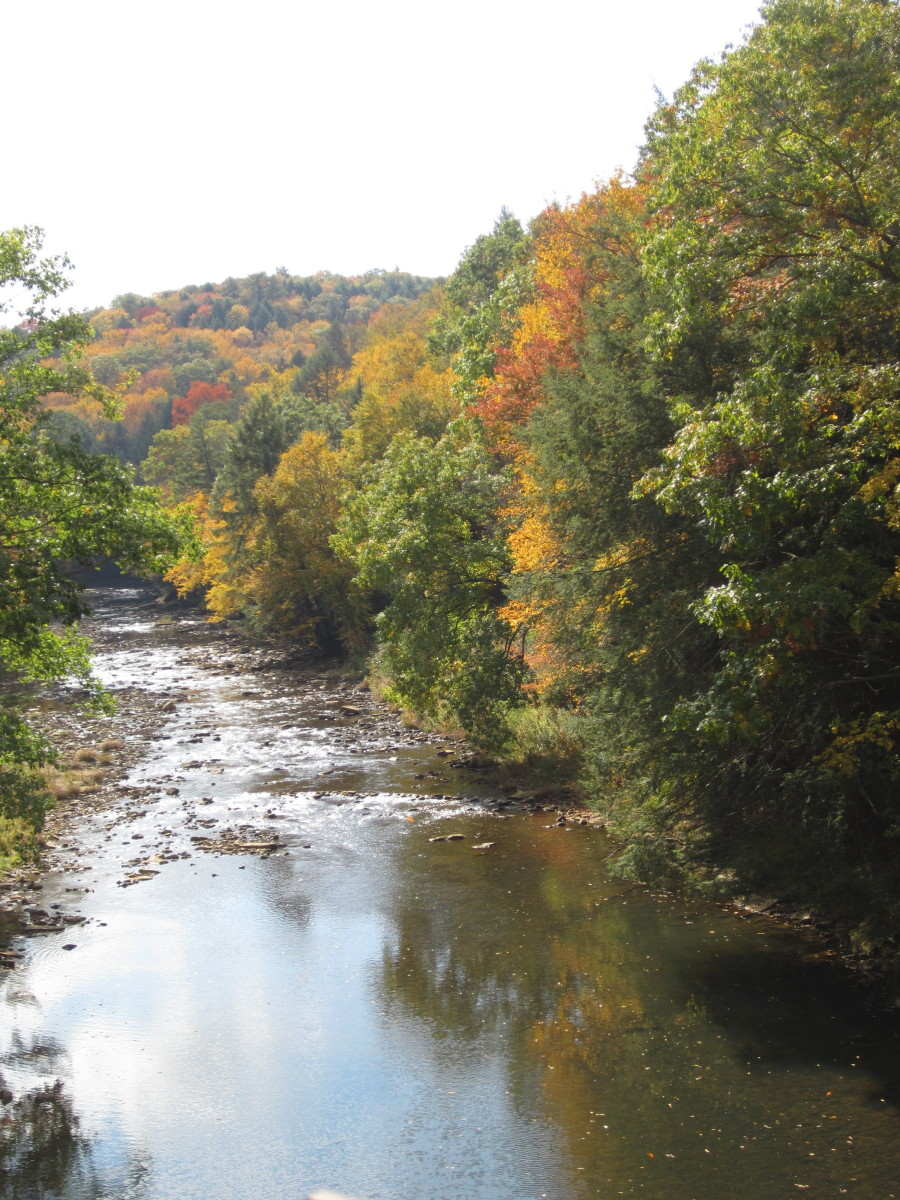 Sandy Creek in Fall