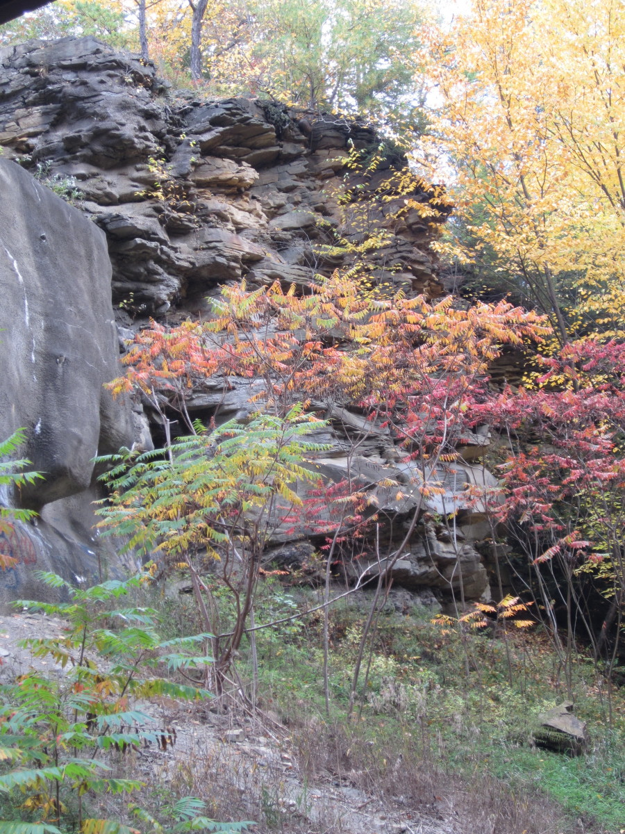 Rocks and fall colors along Sandy Creek Trail
