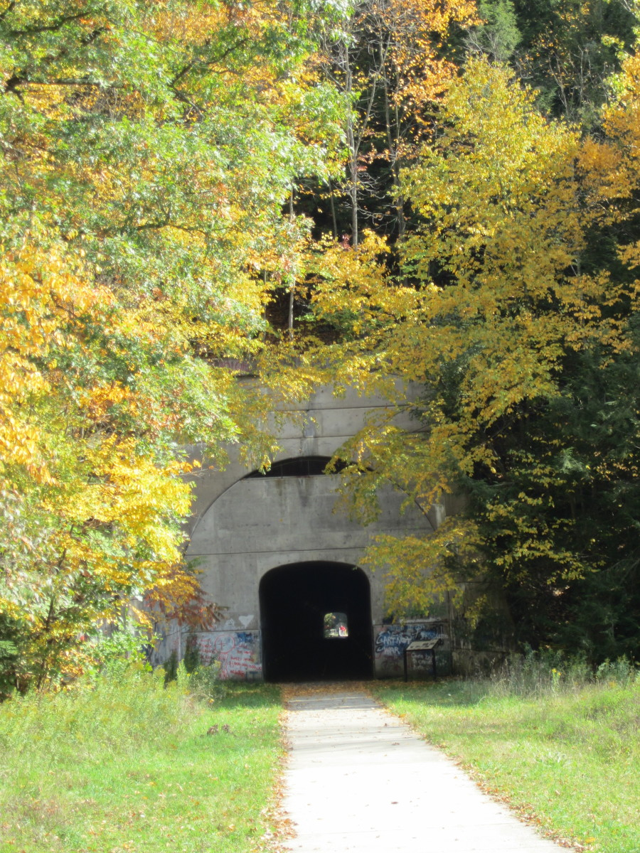 The Sandy Creek Tunnel, also known as the Mays Mills or Deep Valley Tunnel (Belmar Bridge Side)