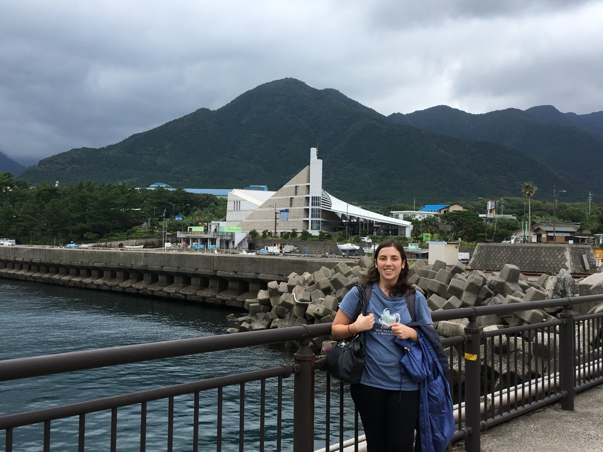 How To Travel Yakushima With No Car