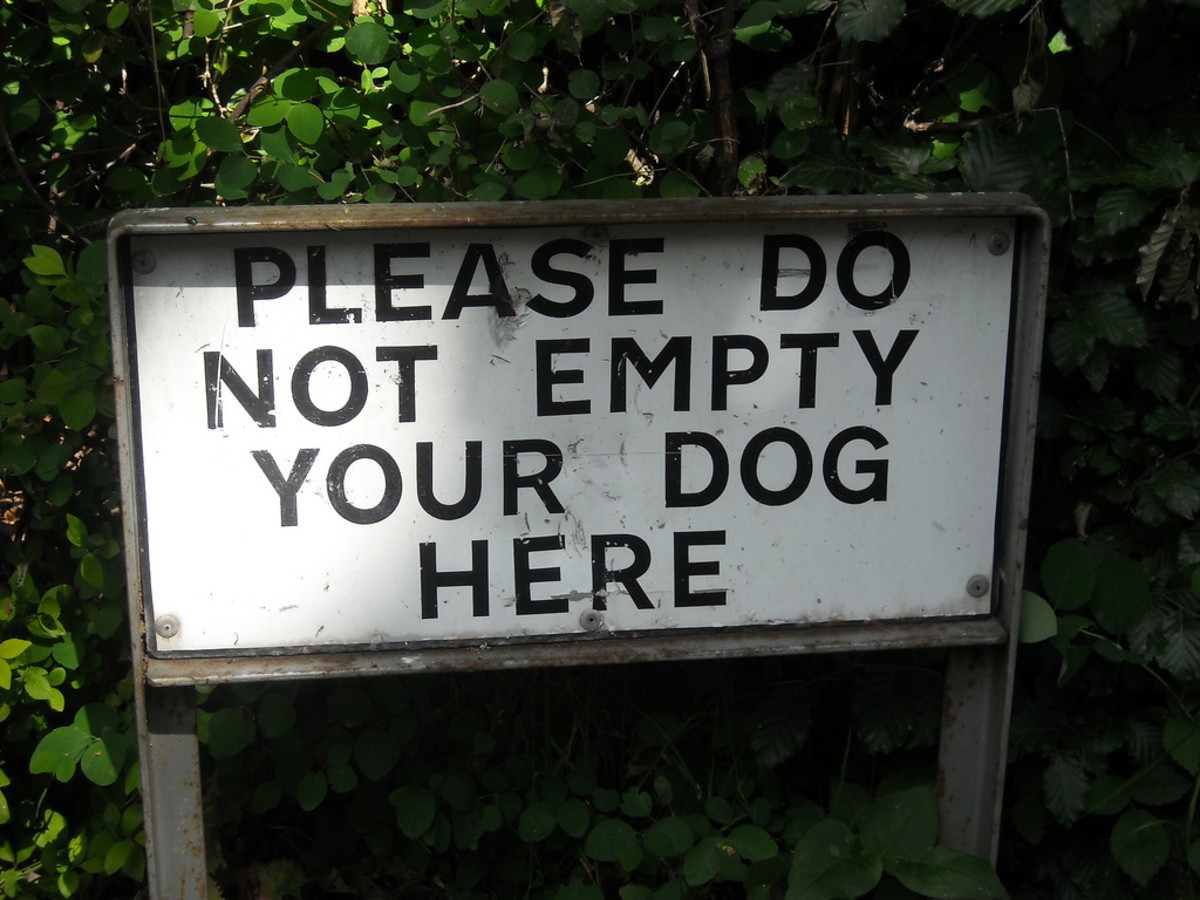England has some surprisingly odd signs.