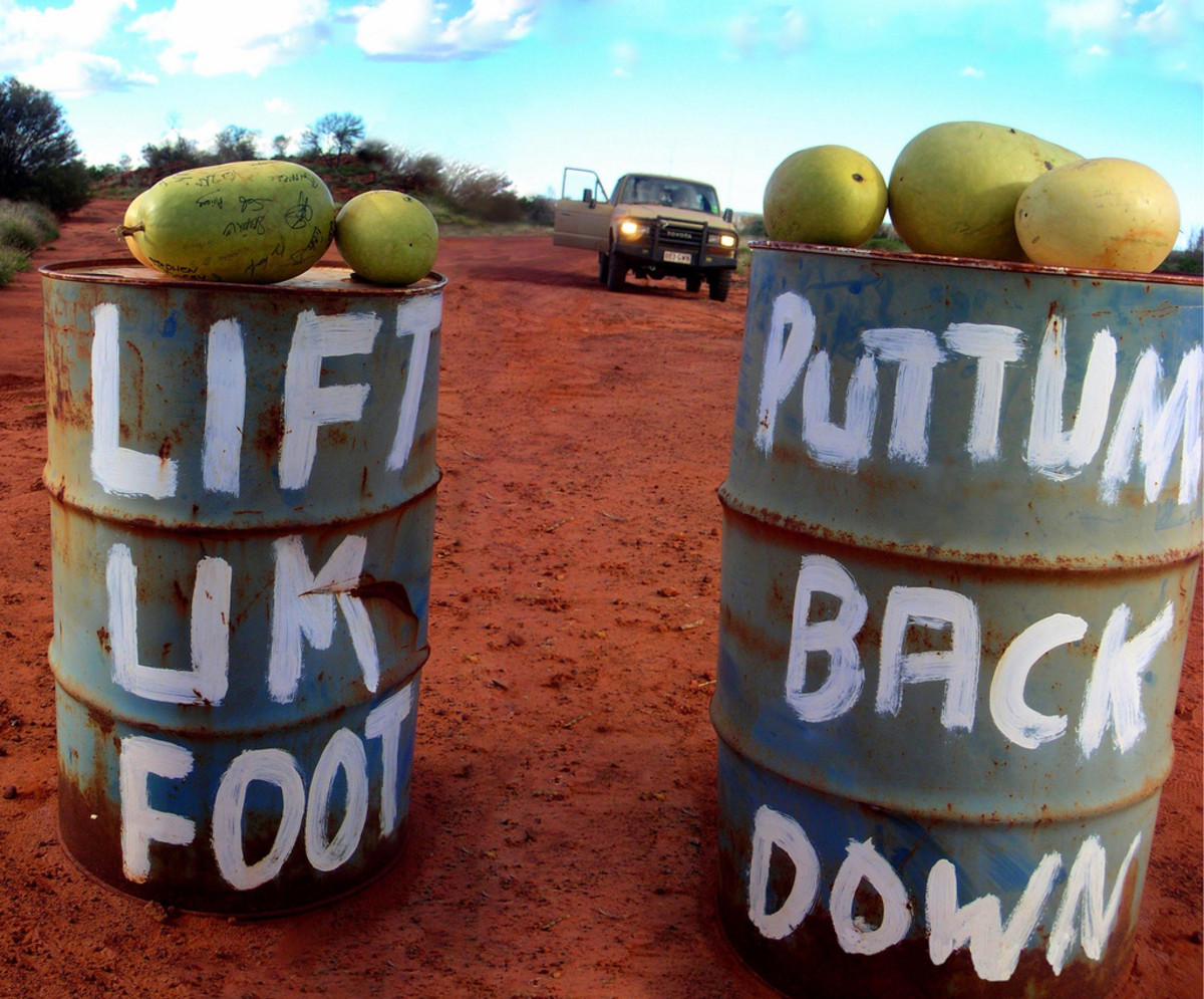 Australian Outback roadside signs (two different pictures stitched together).
