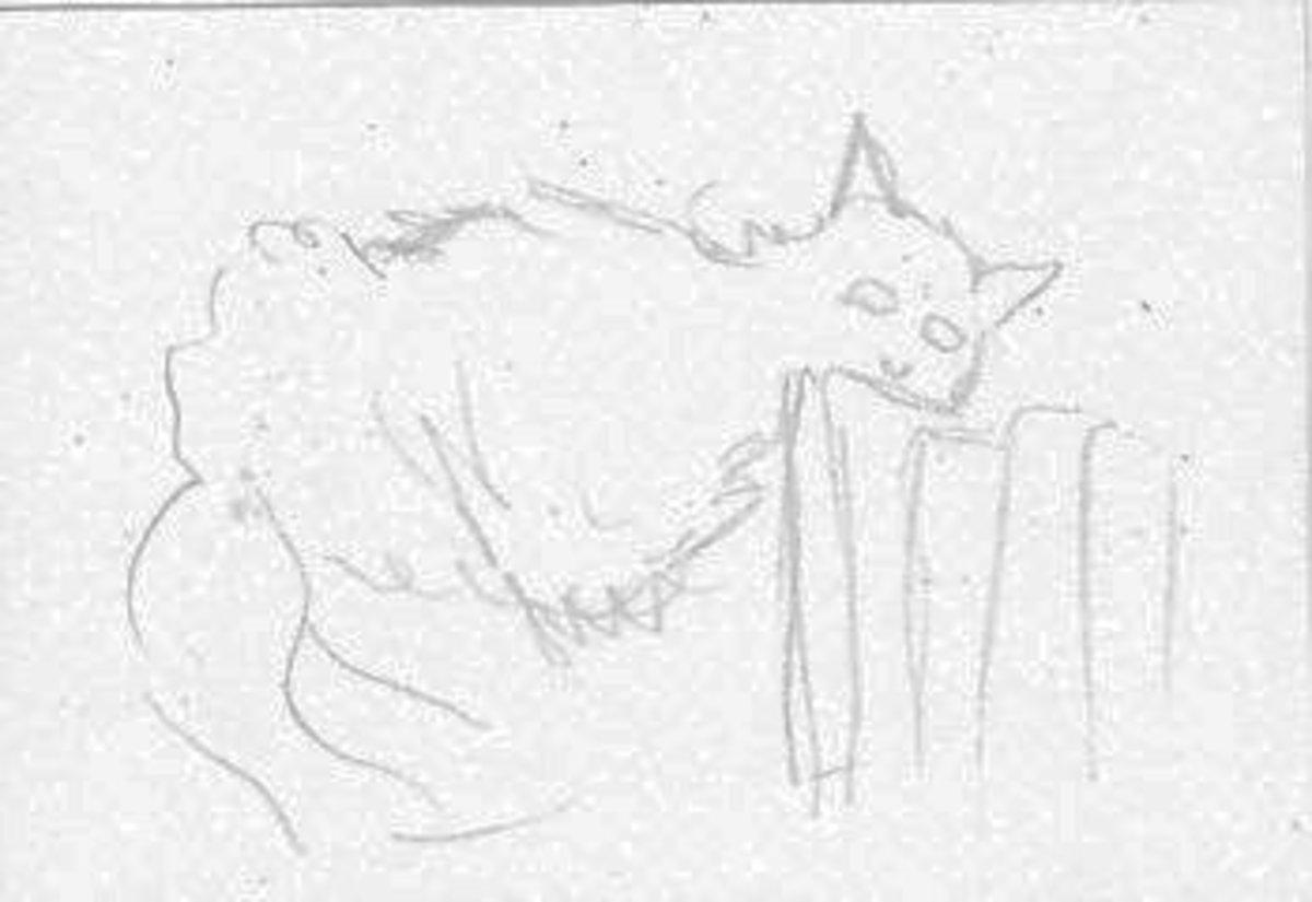 One minute sketch of the author's cat, Ari