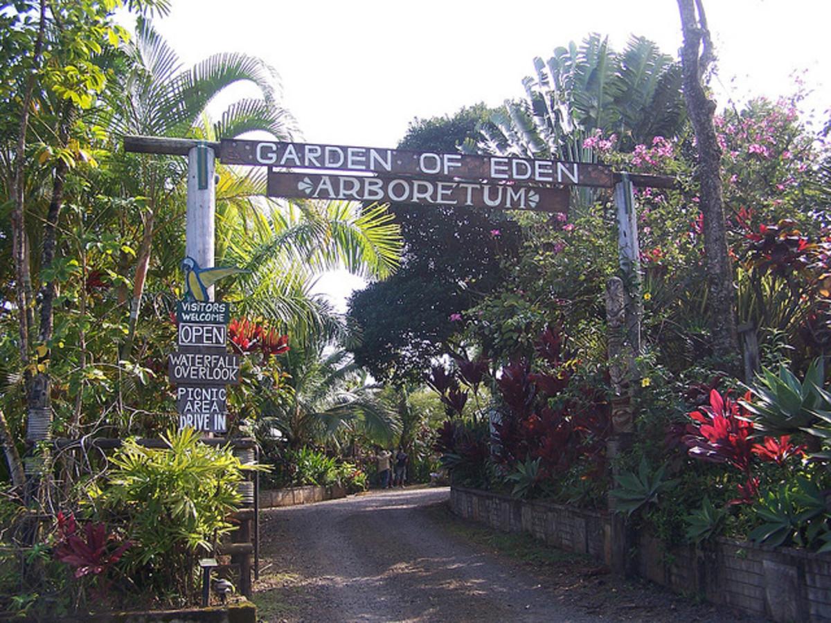 Garden of Eden Arboretum - Puohokamoa Valley, Maui