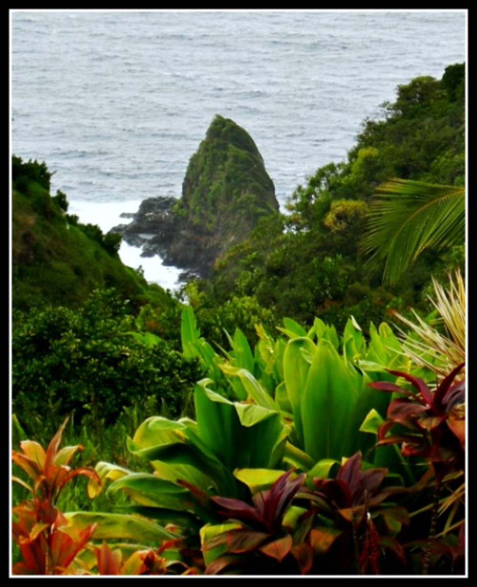 Keopuka Rock - Garden of Eden, Maui