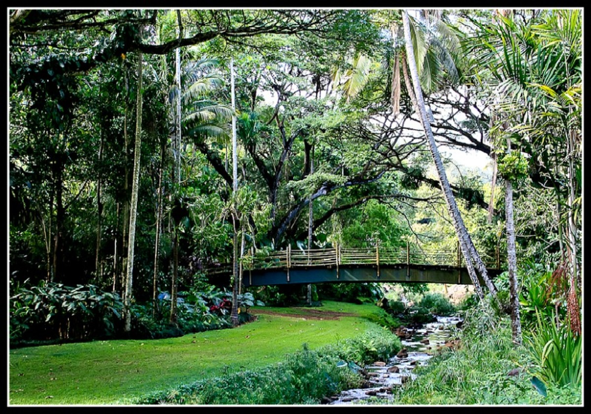 McBryde Garden Bridge, Kauai, Hawaii