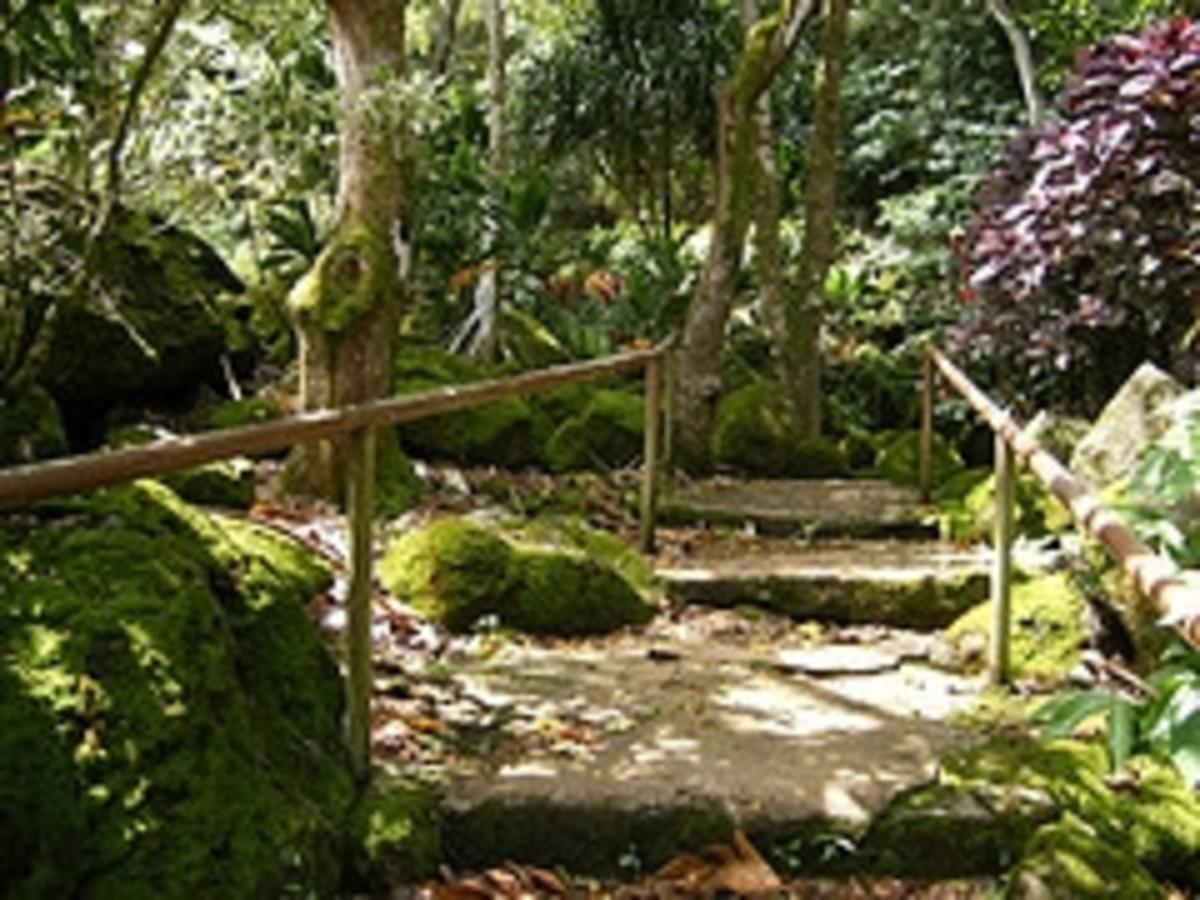 Waimea Valley Audubon Botanical Gardens